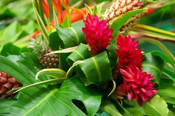 沖縄・太陽の花